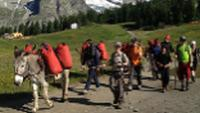 Families walking with donkeys beneath the lofty heights of Mont Blanc |  <i>Kate Baker</i>